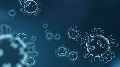 Evropska komisija zbira prijave s strani zagonskih podjetij in MSP z inovativnimi rešitvami za boj proti izbruhu Coronavirusu